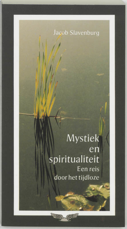De voorkant van het boek met de titel : Mystiek en spiritualiteit