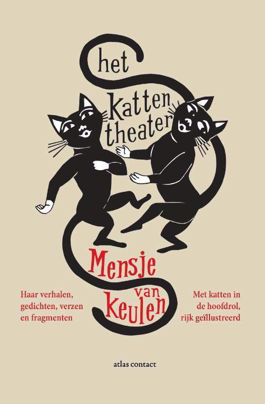 De voorkant van het boek met de titel : Het kattentheater