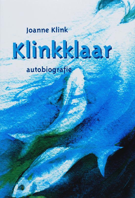De voorkant van het boek met de titel : Klinkklaar